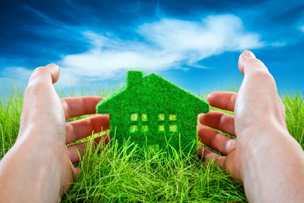Eco-Friendly Ideas To Improve Your Home
